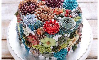 三色旋花花语,三色旋花种植方法
