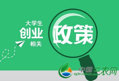 中国资本市场结构图
