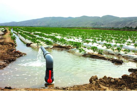 推行节水灌溉管道 八千亩稻田年底通 自来水