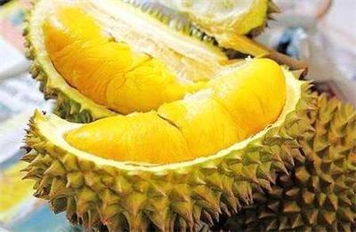 水果之王榴莲孕妇不宜多吃
