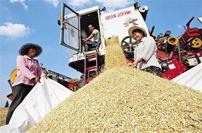 互联网+农业全产业链 为现代农业腾飞插上翅膀
