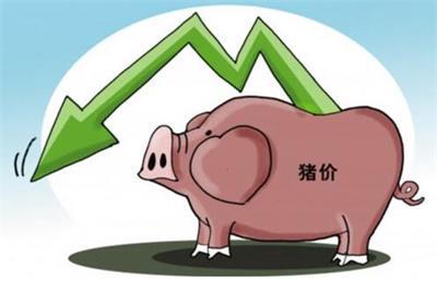 养殖户:6月猪价暗流涌动就是刀尖上的博弈