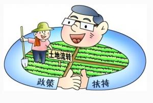 内江出台扶持政策加大现代农业招商引资力度