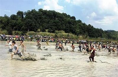 贵州玉屏侗族同胞庆 六月六 摸鱼捉鸭引游客体验