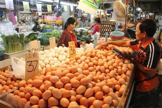 鸡蛋市场转入需求淡季