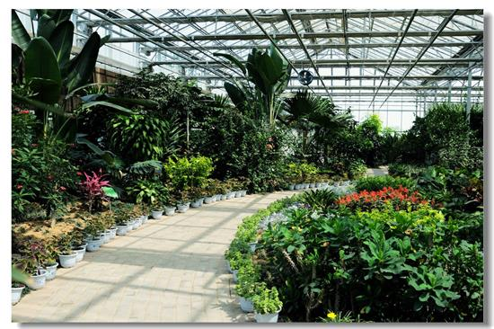 我国将设立多个类似于杨凌的农业示范区