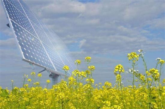 高科技农业将成未来趋势