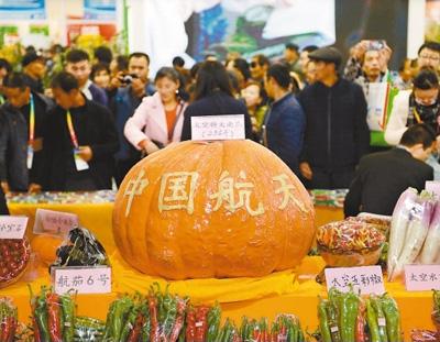 杨凌农高会发布最新科技成果及专利2369项