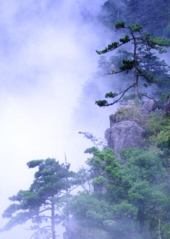 湖南江华践行两山思想