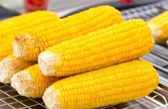 我国玉米出口持续放量