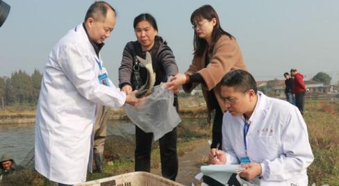 武汉重点抽检水产品
