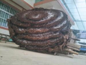 直径1.65米重253斤  养蜂人养出七层大蜂窝