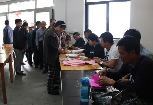 31省份261村调查:村委会选举喜忧参半