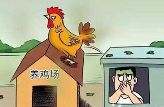 海南万宁划定畜禽养殖禁养区