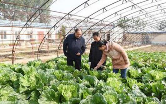 广西提升农经干部综合素质培训班在桂林市举行