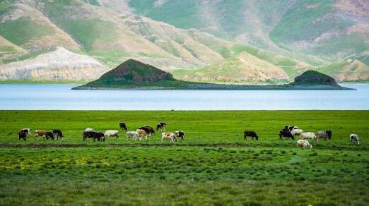 西藏日喀则特色资源搭上电商快车