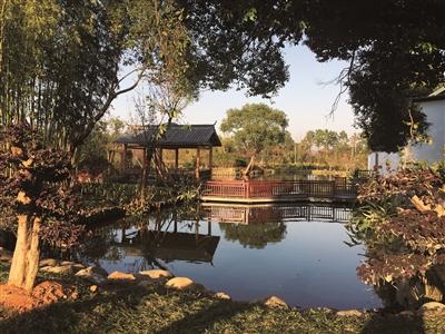 良渚斑斓农村确立为扮靓杭州后村儿子园加以分