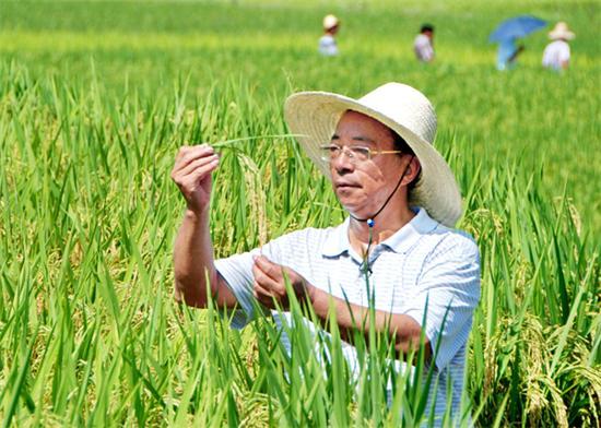 85后农业劳模 受到中央领导接见 想都不敢想