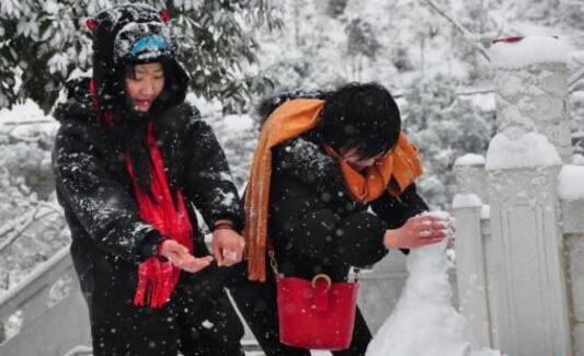 重庆部分地区遭低温冻害 直接经济损失5200余万元