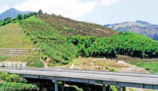 茶乡安溪在福建率先全面推行山长制 守护生态