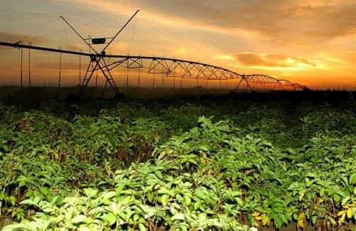 内蒙古巴彦淖尔市农村基础设施改善成效显著