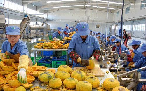 实施乡村振兴战略 农产品加工业将大有可为