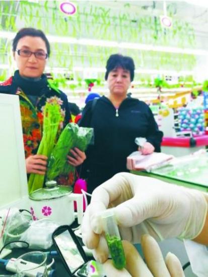 工作人员检测菠菜残留物
