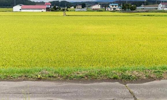 抓好农企两端,化解农地流转风险