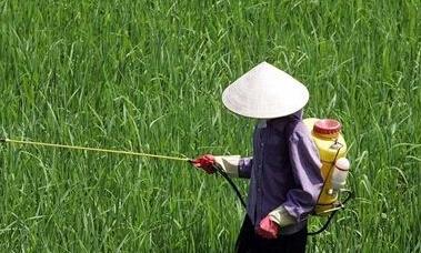 北京市系统大力推进农药减量的工作