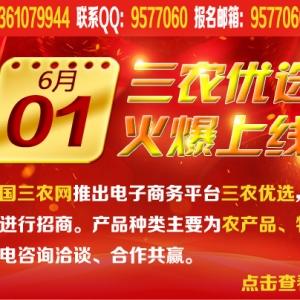 中国三农网助农服务平台启动