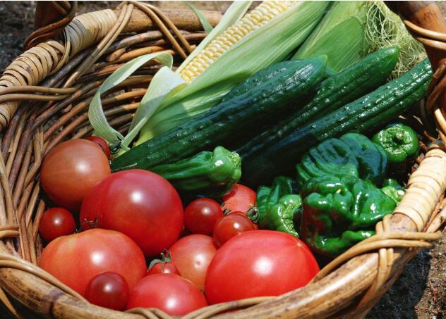 """北京两万亩蔬菜免费享""""田保姆""""服务  改善农业生态环境"""