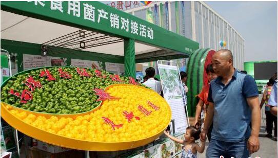 环京津贫困县农产品出山入市 千种亮相河北高碑店