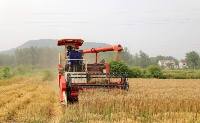 2018年山东三夏机械化生产正式开机 日收小麦461万亩
