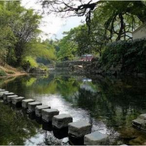 """广西贺州市建设生态乡村 落后渔村变成""""童话小镇"""""""