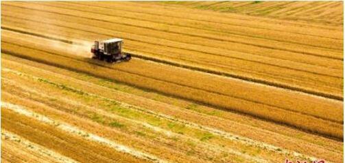 """国务院:将每年农历秋分设立为""""中国农民丰收节"""""""