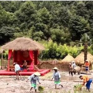 福建尤溪打造田园实景剧目 再现农耕文明与传统民俗