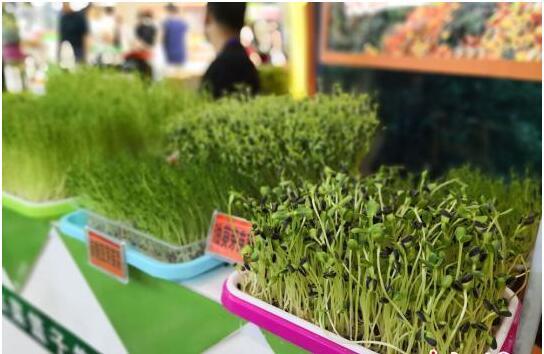 """第24届""""兰洽会""""闭幕 绿色生态产业成为投资热点"""