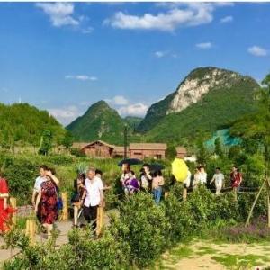"""贵州:乡村""""微旅游""""吸引都市客"""