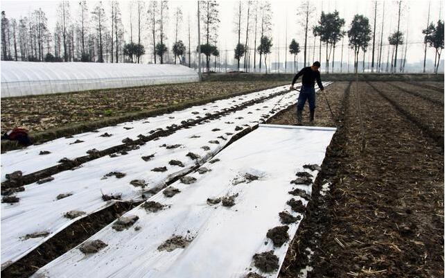 挣钱越来越难了!未来几年 农民工还即将面对以下三大难题!
