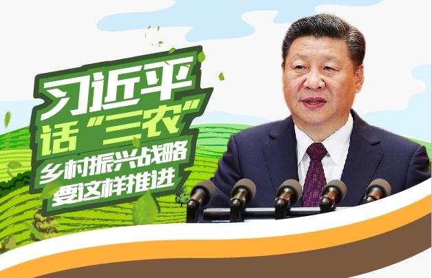 """专题回顾:习近平话""""三农"""" 乡村振兴战略要这样推进"""
