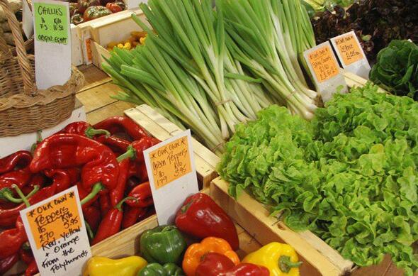 有机农业发展前景如何 有哪些特点