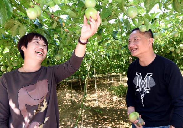 河北省定州市培育新型职业农民120多名