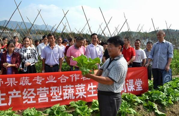 今年甘肃省投入1亿元 大力推动农民培训工作