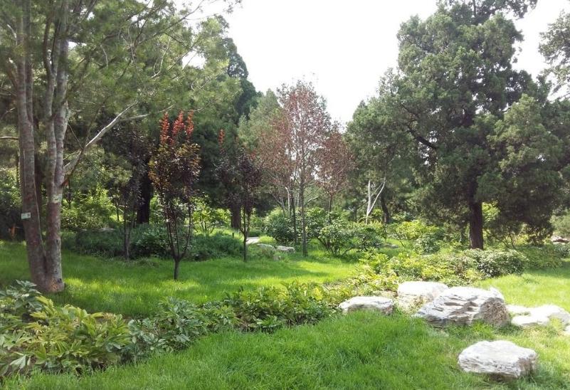 bt365体育在线浅谈园林绿化苗木的选择搭配与注意事项