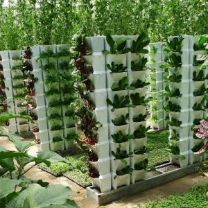 山东加快智慧农业发展 将建济青潍智慧农业示范区