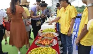 中国·砚山蔬菜园艺博览会召开 签订协议投资1.14亿元
