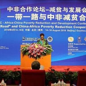 """中国经验助非洲减贫 """"授人以渔""""显真情"""