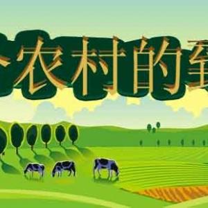农村创业致富有哪些赚钱的小项目