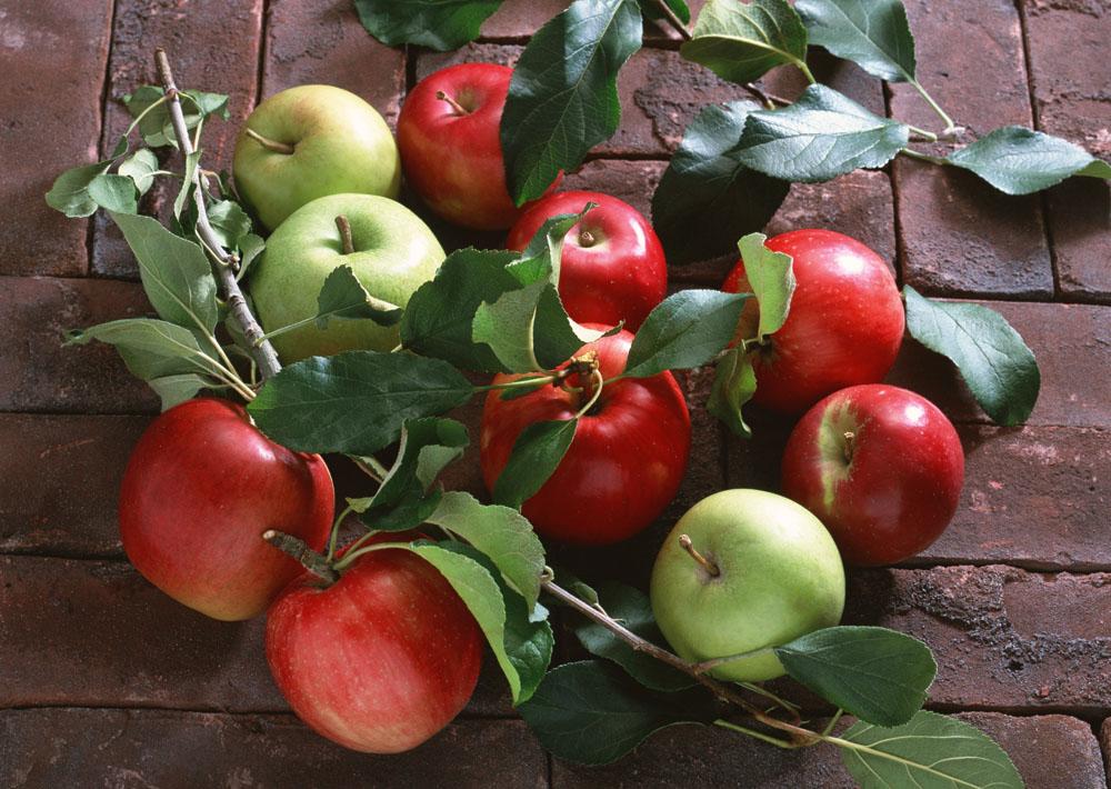 晚上吃苹果好吗 苹果什么时间吃最好呢