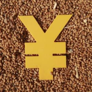 国家每年发放农业补贴数千亿元,为何农民只能获得寥寥几十元?